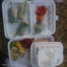 Yummy spring roll breakfast - top half of pic